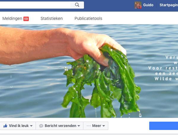 nieuws op Facebook